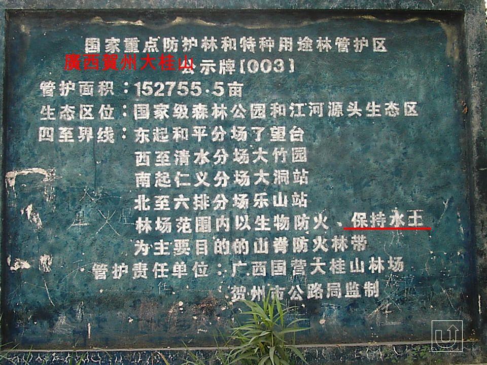 廣西賀州大桂山