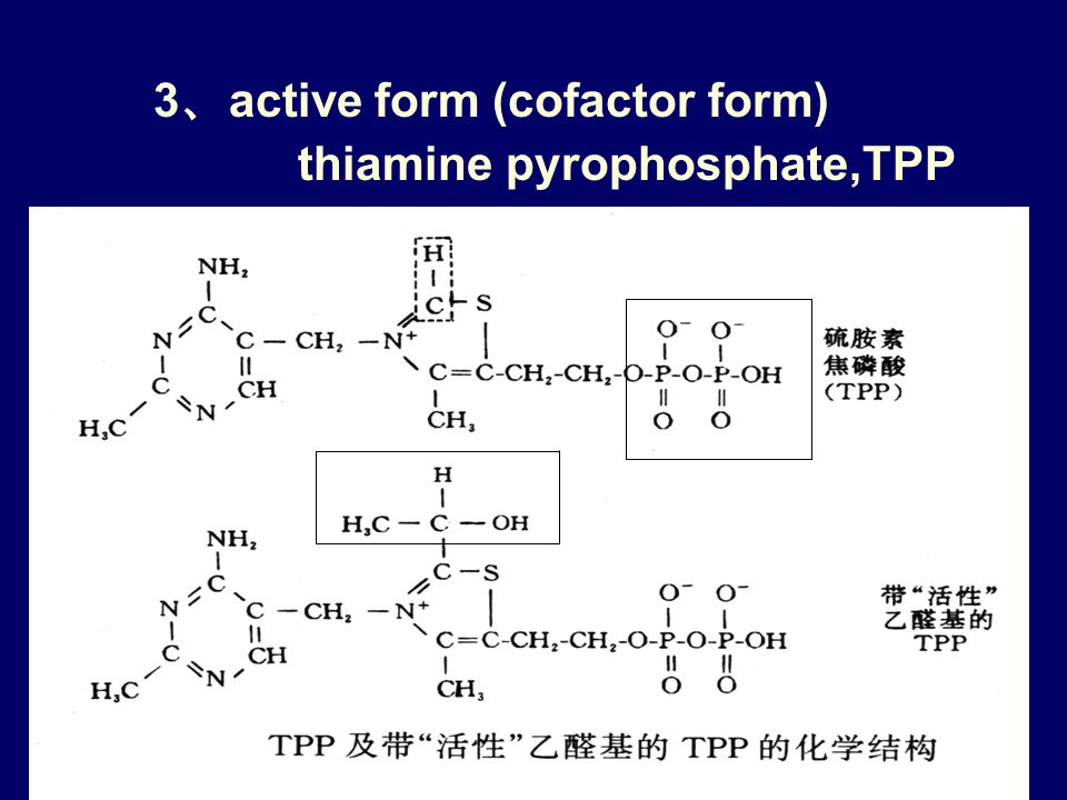 2 、 chemical structure & functional group