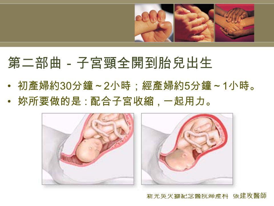 第二部曲-子宮頸全開到胎兒出生 初產婦約 30 分鐘~ 2 小時;經產婦約 5 分鐘~ 1 小時。 妳所要做的是 : 配合子宮收縮, 一起用力。 新光吳火獅紀念醫院婦產科 張建玫醫師