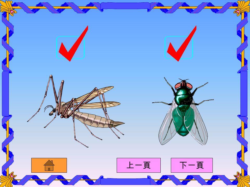 以下哪些動物會傳播疾病呢 上一頁下一頁