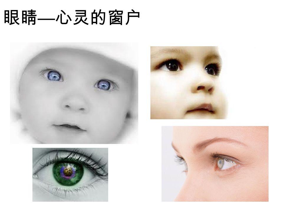 眼睛 — 心灵的窗户