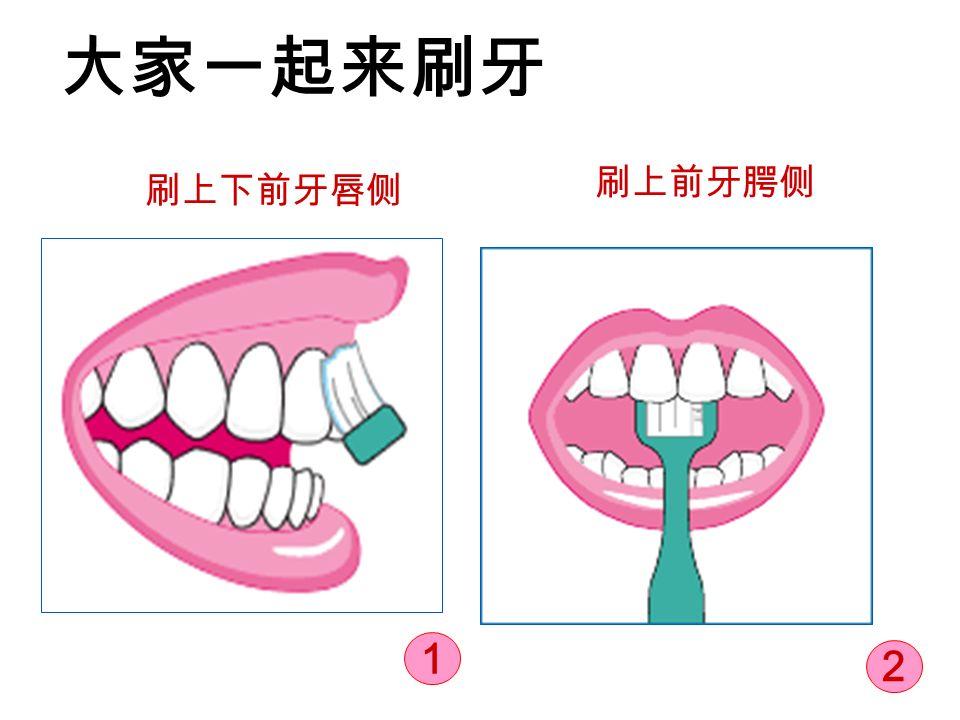 大家一起来刷牙 刷上下前牙唇侧 刷上前牙腭侧 1 2