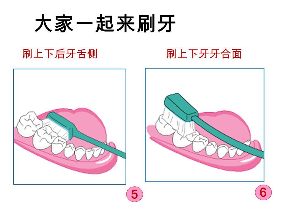 大家一起来刷牙 刷上下后牙舌侧刷上下牙牙合面 5 6