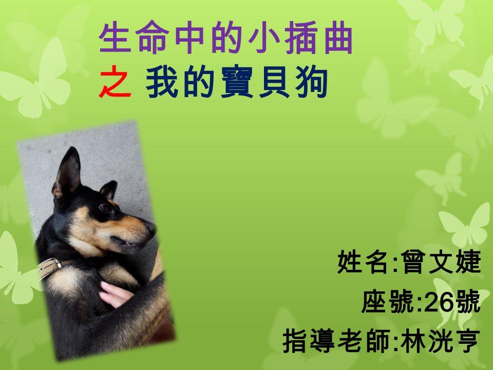 生命中的小插曲 之 我的寶貝狗 姓名 : 曾文婕 座號 :26 號 指導老師 : 林洸亨