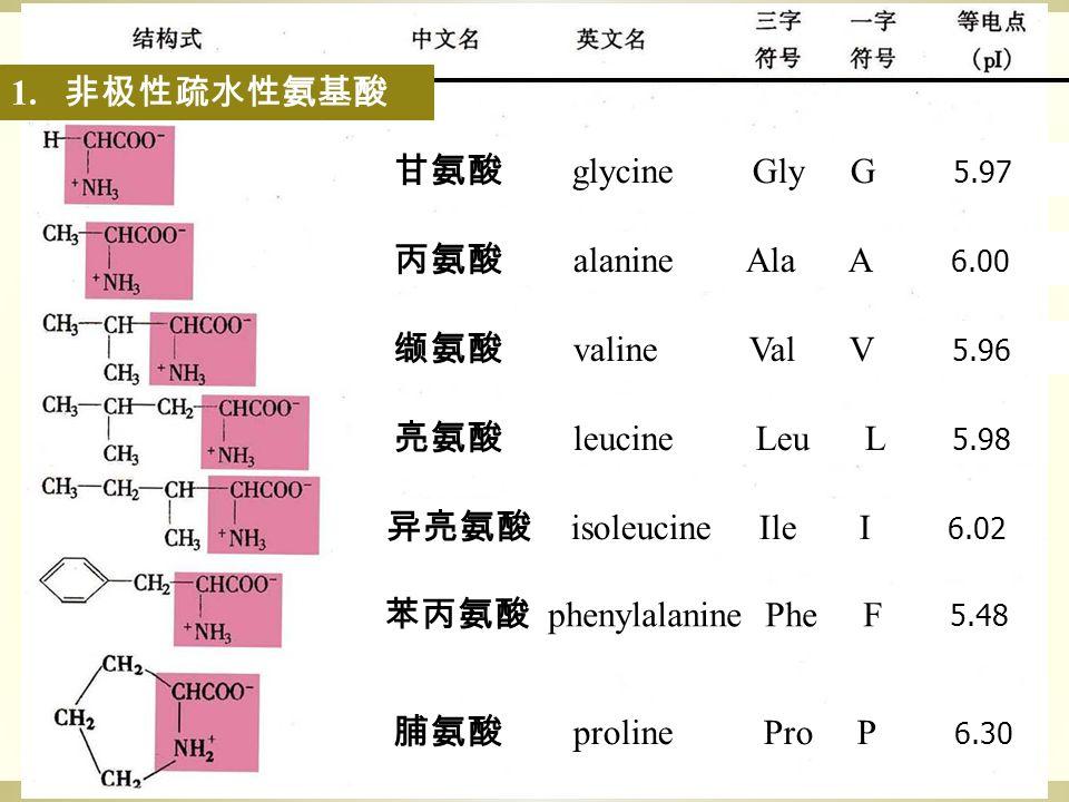 甘氨酸 glycine Gly G 5.97 丙氨酸 alanine Ala A 6.00 缬氨酸 valine Val V 5.96 亮氨酸 leucine Leu L 5.98 异亮氨酸 isoleucine Ile I 6.02 苯丙氨酸 phenylalanine Phe F 5.48 脯氨酸 proline Pro P 6.30 1.