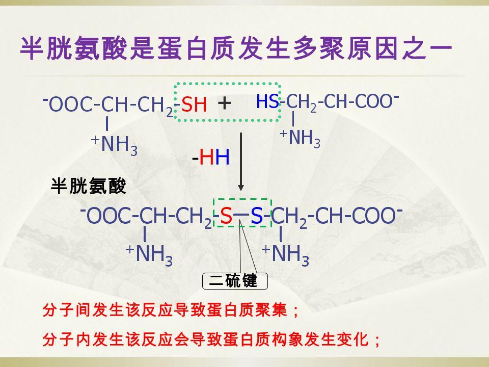 半胱氨酸是蛋白质发生多聚原因之一 + 二硫键 -HH-HH 半胱氨酸 分子间发生该反应导致蛋白质聚集; 分子内发生该反应会导致蛋白质构象发生变化;