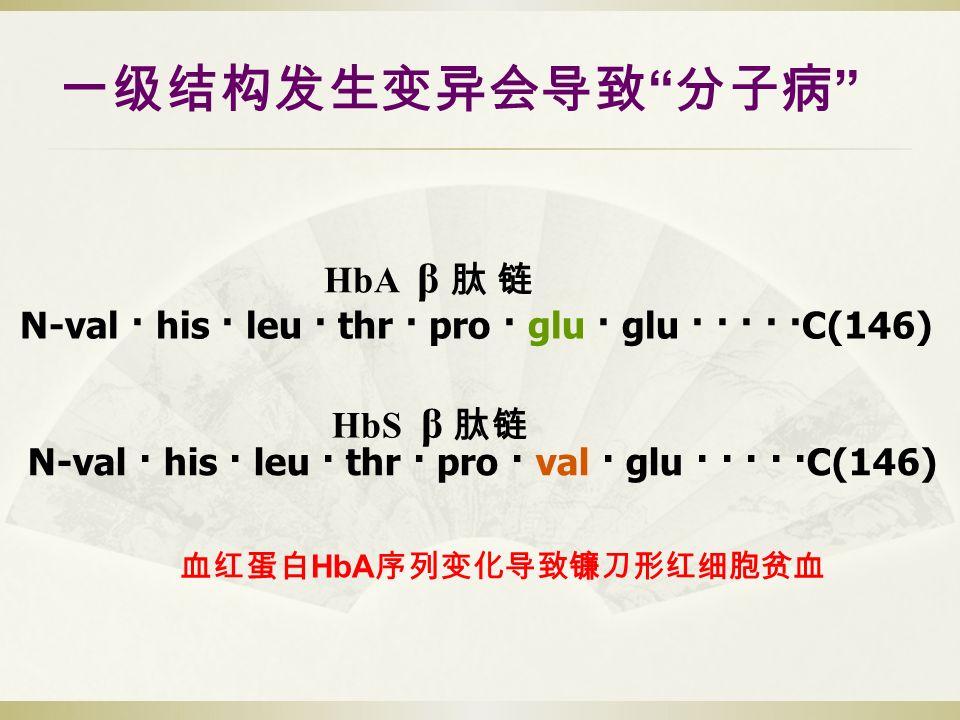 一级结构发生变异会导致 分子病 N-val · his · leu · thr · pro · glu · glu · · · · ·C(146) HbS β 肽链 HbA β 肽 链 N-val · his · leu · thr · pro · val · glu · · · · ·C(146) 血红蛋白 HbA 序列变化导致镰刀形红细胞贫血