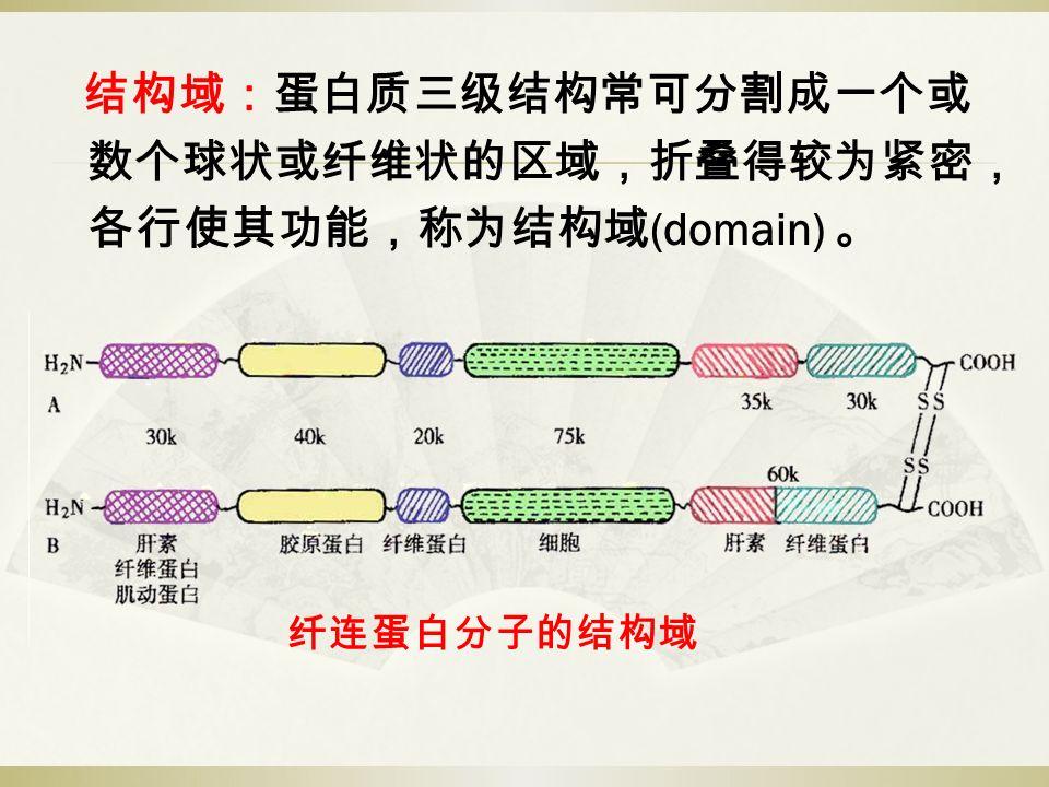 结构域:蛋白质三级结构常可分割成一个或 数个球状或纤维状的区域,折叠得较为紧密, 各行使其功能,称为结构域 (domain) 。 纤连蛋白分子的结构域