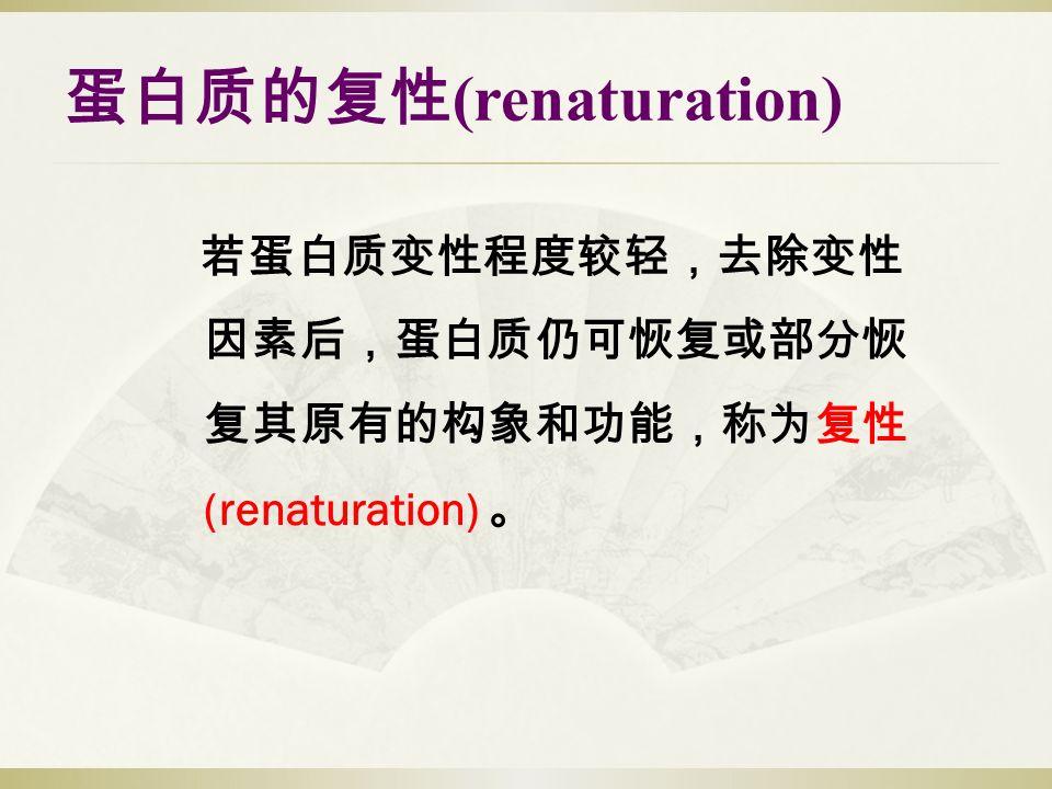 若蛋白质变性程度较轻,去除变性 因素后,蛋白质仍可恢复或部分恢 复其原有的构象和功能,称为复性 (renaturation) 。 蛋白质的复性 (renaturation)