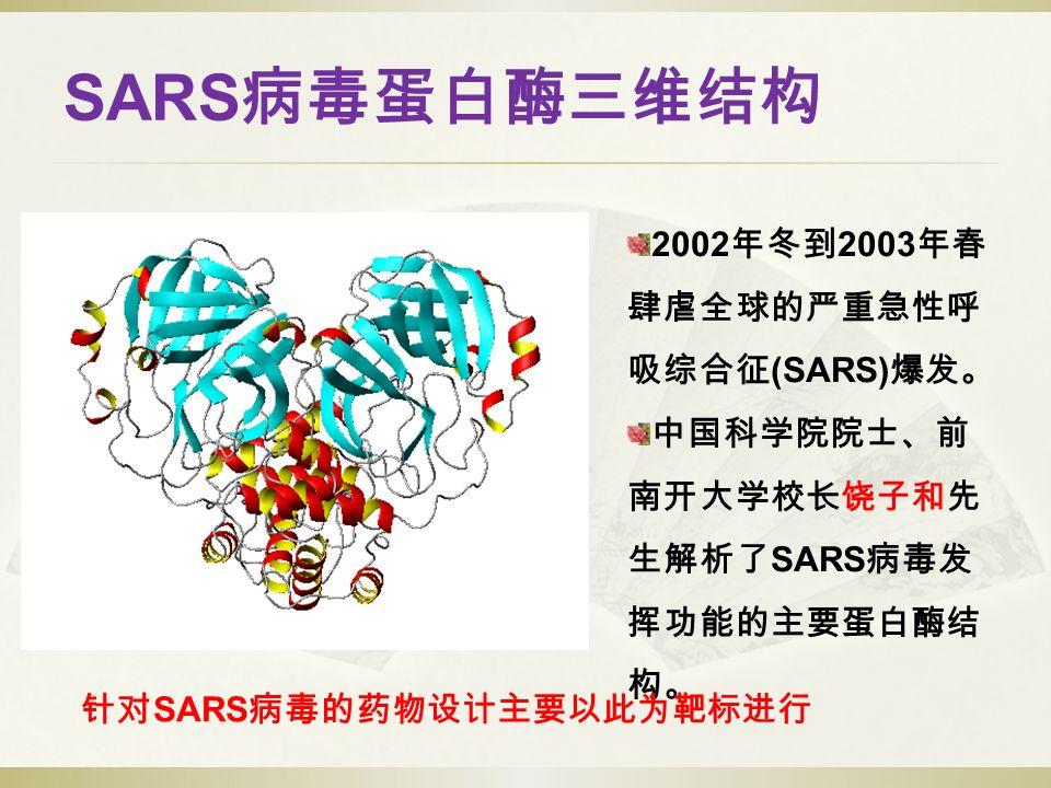 SARS 病毒蛋白酶三维结构 2002 年冬到 2003 年春 肆虐全球的严重急性呼 吸综合征 (SARS) 爆发。 中国科学院院士、前 南开大学校长饶子和先 生解析了 SARS 病毒发 挥功能的主要蛋白酶结 构。 针对 SARS 病毒的药物设计主要以此为靶标进行
