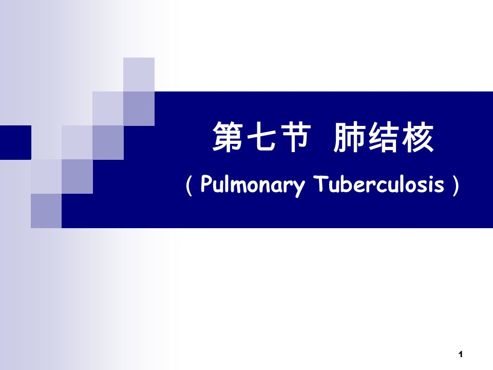 1 第七节 肺结核 ( Pulmonary Tuberculosis )