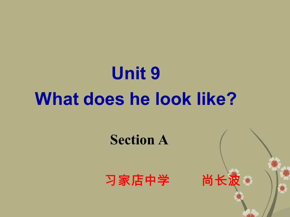 Unit 9 What does he look like Section A 习家店中学 尚长波