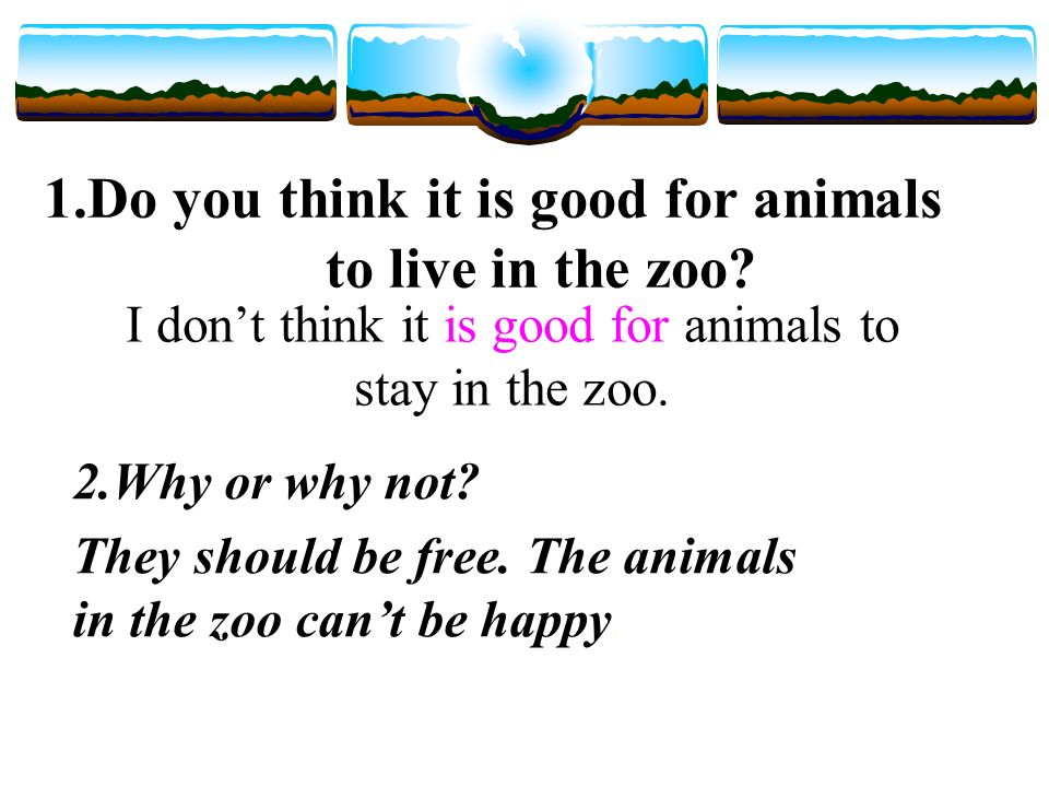 Pre-read 1.Do you think it is good for animals to live in the zoo 2.Why or why not