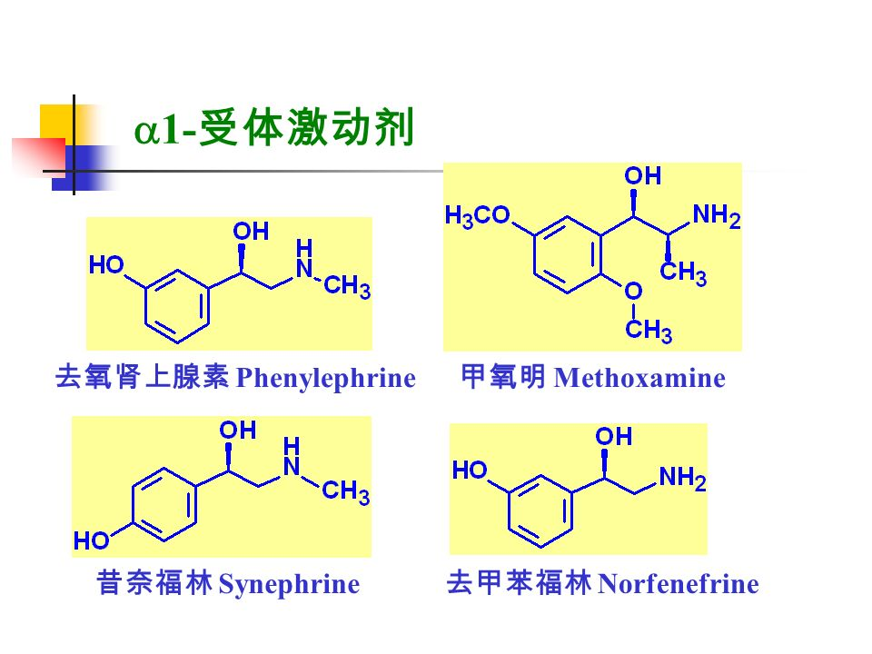   1- 受体激动剂 去氧肾上腺素 Phenylephrine 甲氧明 Methoxamine 昔奈福林 Synephrine 去甲苯福林 Norfenefrine