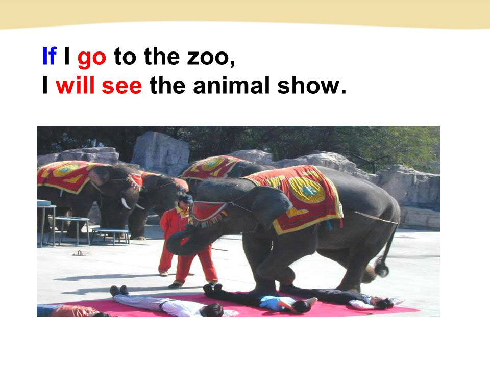 If I go to the zoo, I will see the animal show.