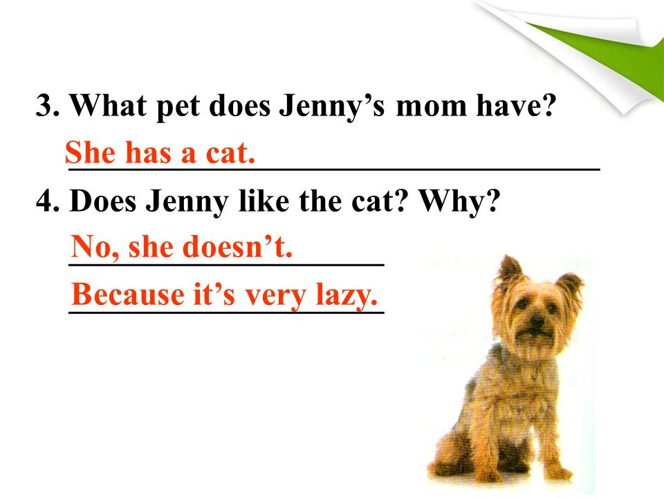 3. What pet does Jenny's mom have. ________________________________ 4.